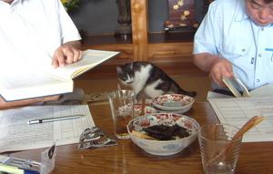 たかまった スローフード 栗原の食復活